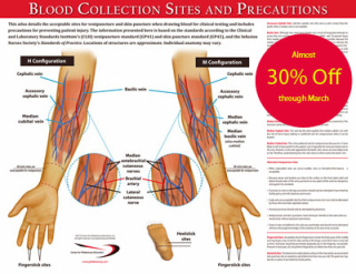 AnatomyPoster2015_discounted_400w